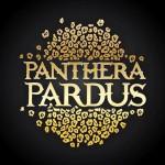 panthera pardus 2